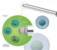 Incyte Arc -活细胞密度监测电极