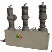 智能开关10KV高压断路器制造厂家