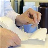 8220C-01医用食品FDA 证书透明的质量控制标签