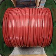 防爆铠装伴热电缆RDP2-J4/DXW2-PF