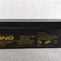 WP2.3-12LONG广隆蓄电池WP2.3-12 12v2.3ah价格