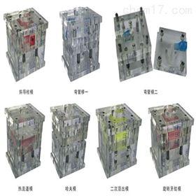 透明冷沖模設計模型|機械教學模型