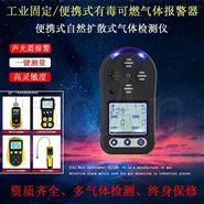 二氧化硫气体浓度报警仪简单易携随时检测仪
