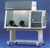 GJB150.10A-2009霉菌试验箱