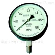 YTF/YA/YR布莱迪一般防腐/氨用/耐热压力表