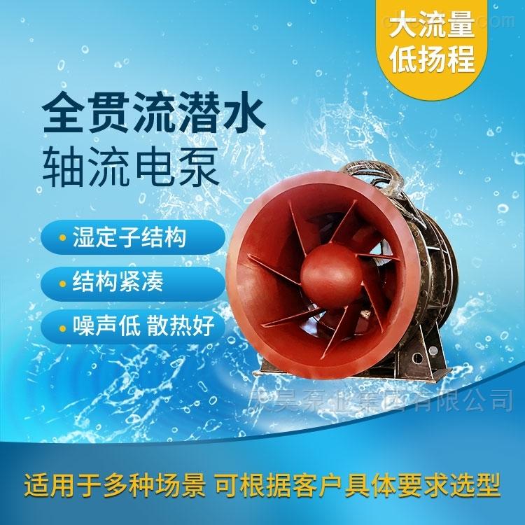 机泵一体高效率QGWZ全贯流潜水电泵天昊泵业