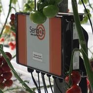 植物生理生态监测系统