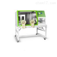 LAI-3厌氧培养箱