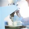 低接枝率的双亲水性共聚物HPG-g-PDMAEMA