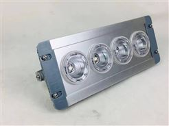 NFFC9121ENFC-9121应急顶灯