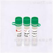 SR1110PCR试剂 2×SYBR Green PCR Mastermix