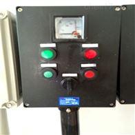BZC-A2D2K1搅拌机用防爆防腐操作柱
