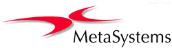 MetasystemsMetasystems 特约代理