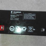 12V120AH冠军蓄电池NP120-12供应商