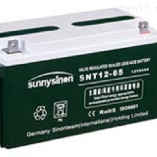 赛能蓄电池SNT12-65批发零售