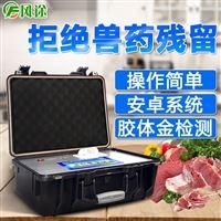 FT--SY肉类食品药残检测仪