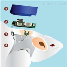 清醒动物葡萄糖含量连续监测系统(CGMS)