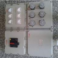 BXX-2K防爆动力检修箱