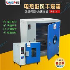 廠家直供高低溫爐高溫烤箱烘箱鼓風干燥箱