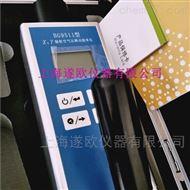 BS9511BG9511辐射空气吸收剂量率仪