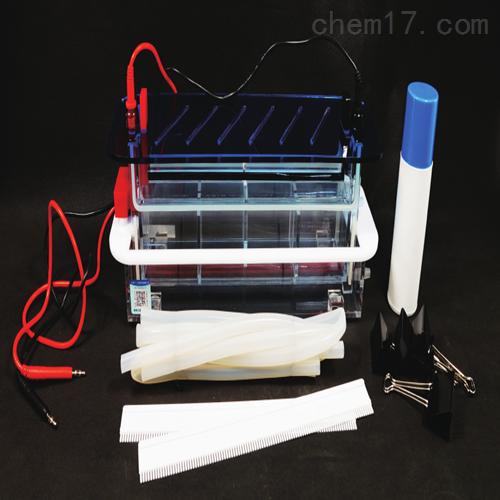 DNA序列分析电泳仪