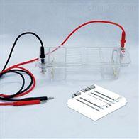 DYCP-32B琼脂糖水平电泳仪电泳槽