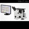 奥林巴斯倒置金相显微镜GX51