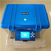 GR-1211气袋法采样器 生产厂家