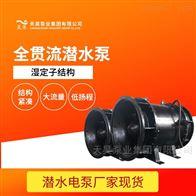 湿定子结构QGWZ全贯流潜水闸门泵生产厂家