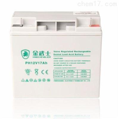 12V17AH PW17-12金武士12V17AH PW17-12 免维护蓄电池