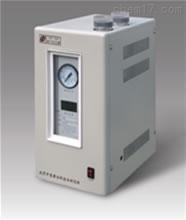 全自动氢气发生器/  厂家