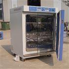 KRG-250BP光照培养老化试验箱