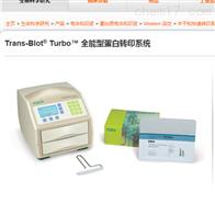 伯樂Trans-Blot Turbo蛋白轉印系統1704150