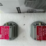 现货VSE流量计VS1GPO12V 32N11/4特价