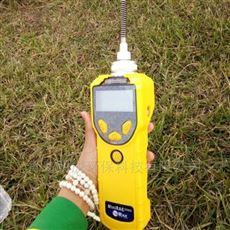 美国PGM-7320 MiniRAE 3000 VOC检测仪