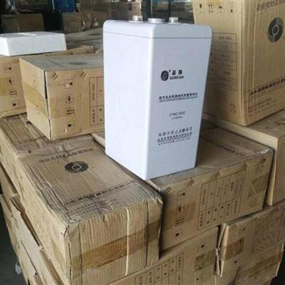 GFM-100 2V100AH圣阳GFM-100 2V100AH UPS不间断电源