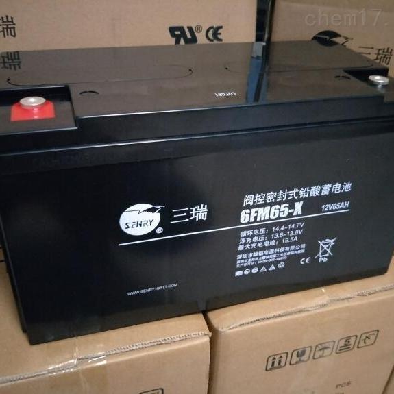 三瑞蓄电池6FM65-X精品销售