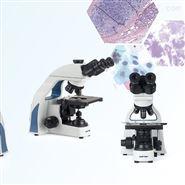 EX21系列生物显微镜