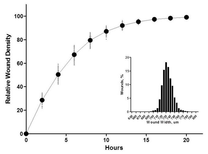 rfp/gfp标记细胞,定量监测共培养的细胞迁移和侵袭