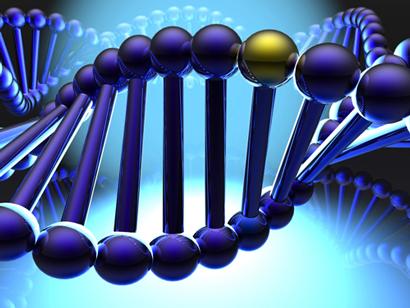 基因双螺旋结构cg模型图