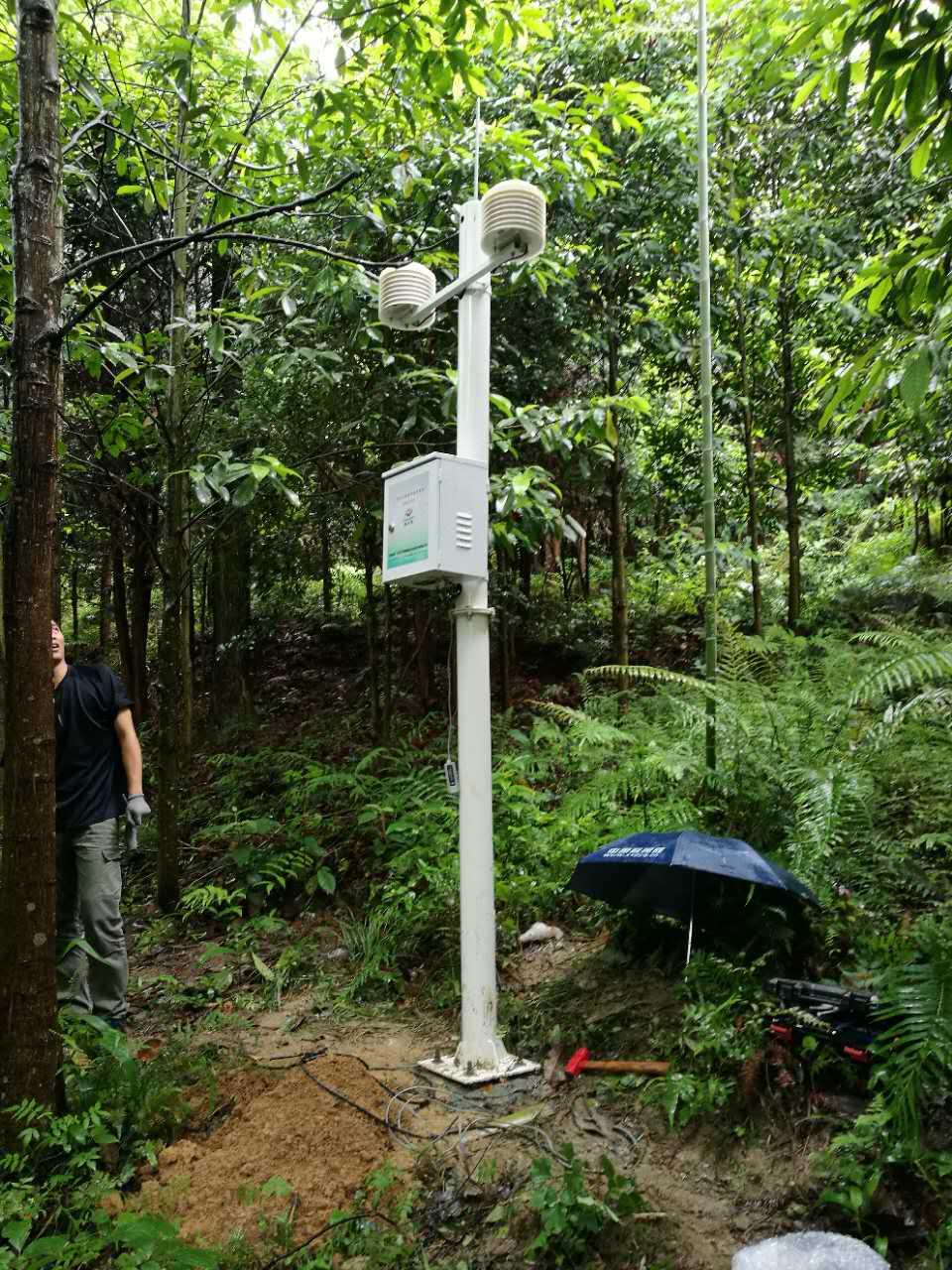 韶关南岭森林公园安装空气负氧离子监测系统项目