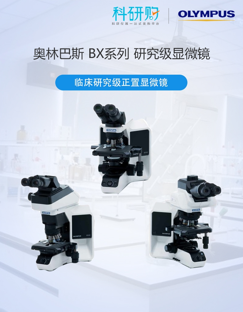 <strong><strong><strong><strong><strong><strong><strong><strong>OLYMPUS奥林巴斯 研究级显微镜</strong></strong></strong></strong></strong></strong></strong></strong>BX53