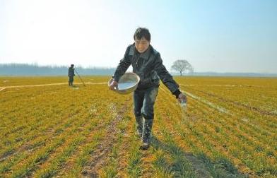 土壤肥料检测仪器哪个牌子好