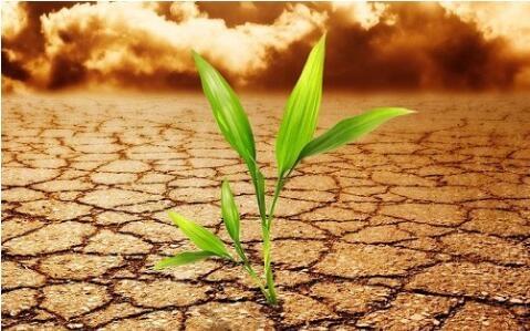 新型土壤肥料养分速测仪器