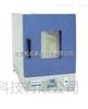 DHG-9640A北京立式鼓风干燥箱DHG-9640A