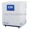 BPN-240RHP触摸屏二氧化碳培养箱