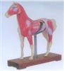 马体针灸模型