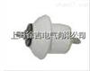 硬性瓷瓶CD-2上海徐吉电气
