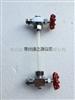 蒸汽发生器玻璃管液位计