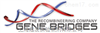 Gene Bridges GmbH 2015